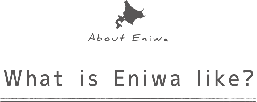 What is Eniwa like?