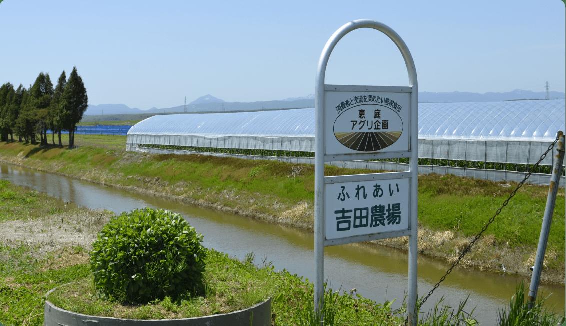 Yoshida Farm