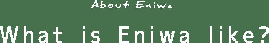 About Eniwa