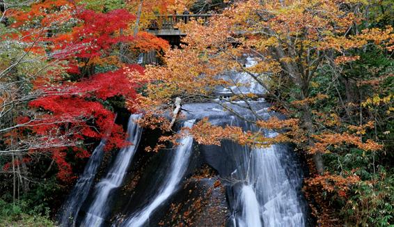 白扇の滝・ラルマナイの滝・三段の滝/紅葉観覧の写真