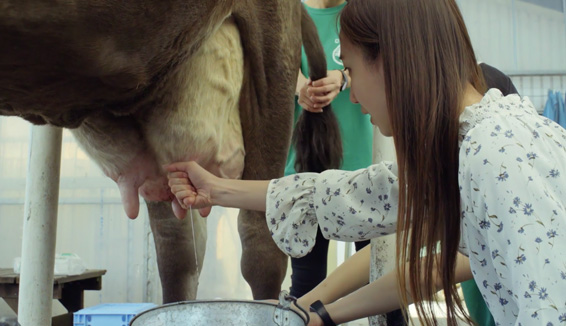 MURAKAMI牧場/酪農體驗の写真