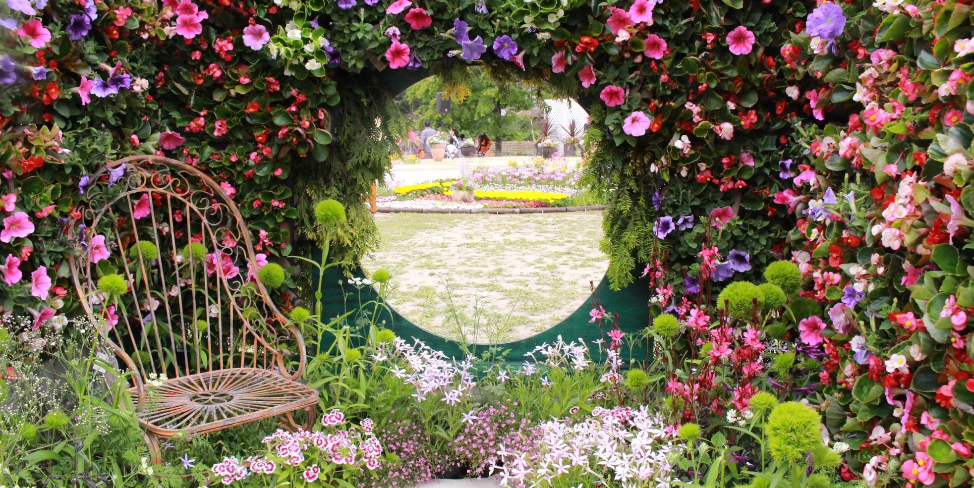 恵庭花とくらし展のメイン写真
