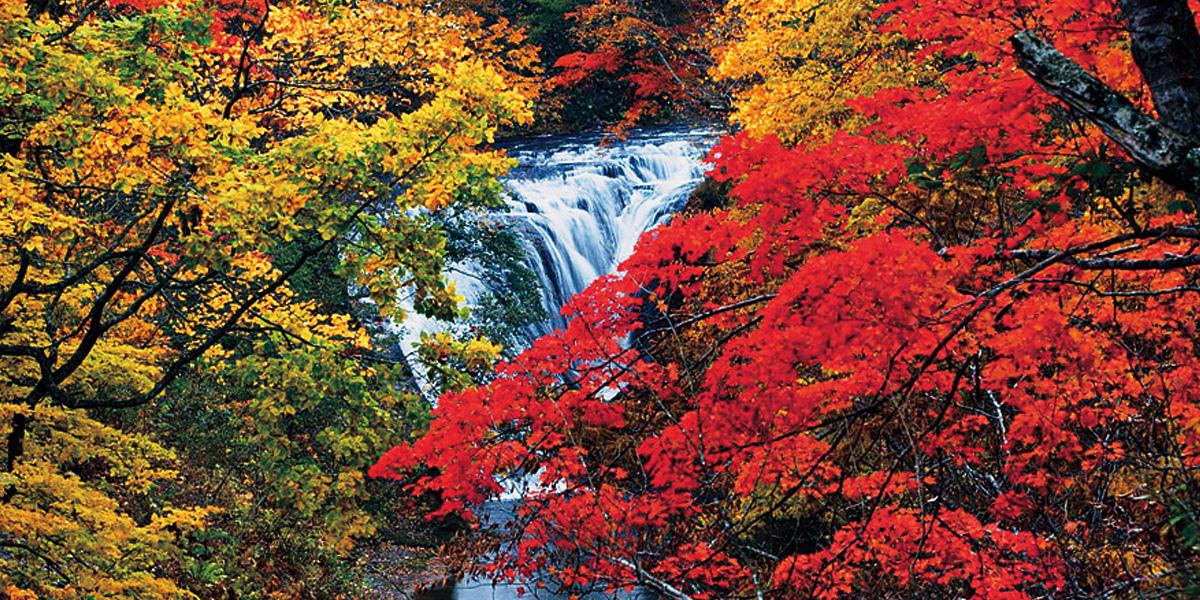 白扇瀑布のメイン写真