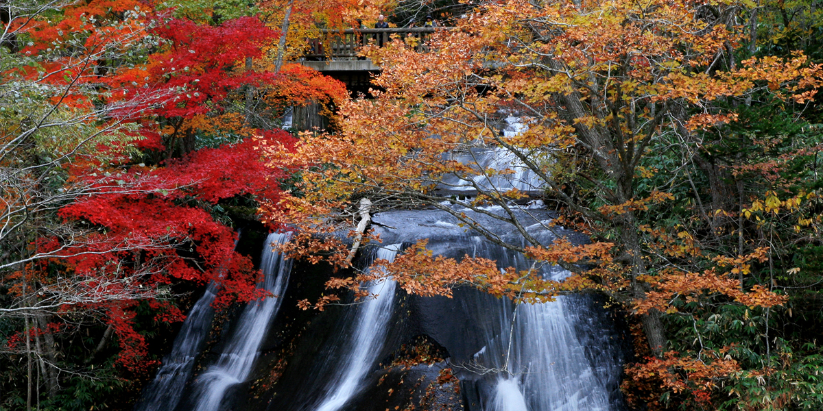 A waterfall with a dignified air, suggestive of Japanese style gardens imgae