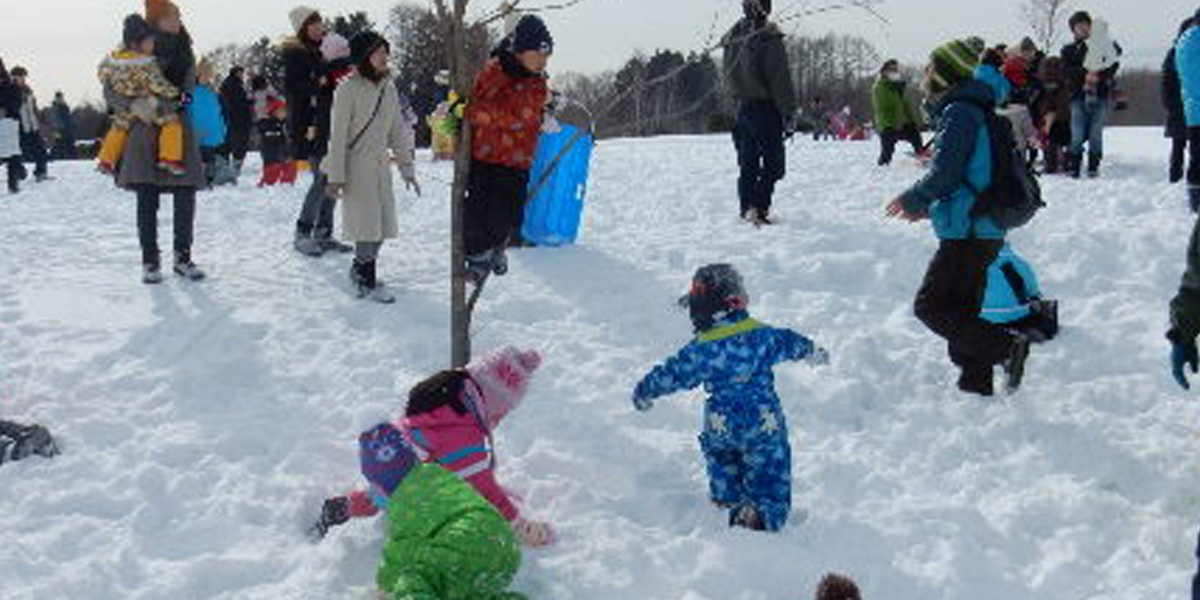 惠庭雪祭のメイン写真