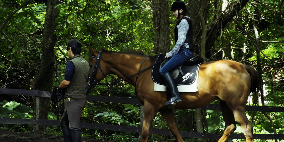 Harvesting, Horseback riding, Make soba noodles – Autumn One-Day Course