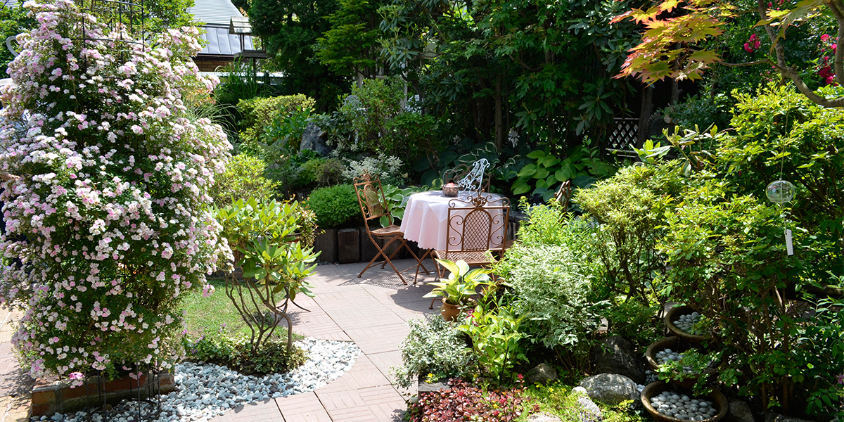 Open Garden main image