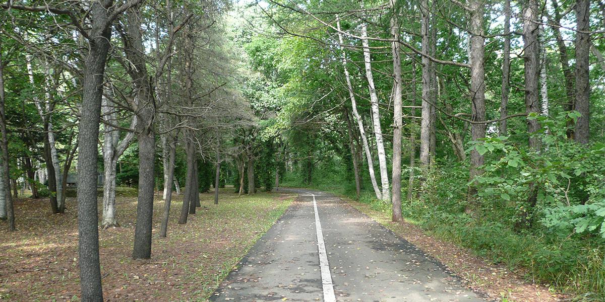 恵庭公園のメイン写真